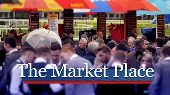 Check out the day's main market movers and most backed