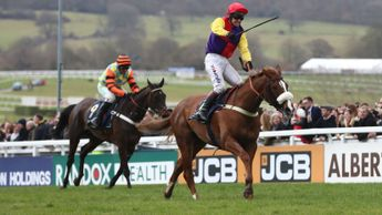 Native River beats Might Bite after an epic Cheltenham duel