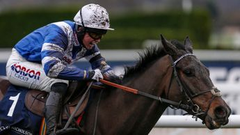 Frodon wins in brilliant style at Cheltenham