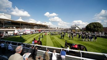 Horses parade in the sun at Sandown Park