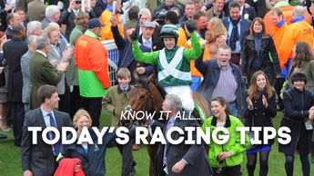 Noel Fehily celebrates on Rock On Ruby after winning the 2012 Champion Hurdle