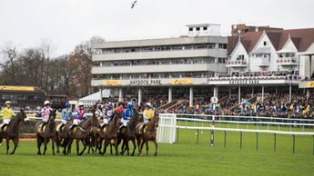 Haydock - inspect for Saturday card