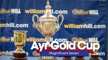 Our team's Ayr Gold Cup tips
