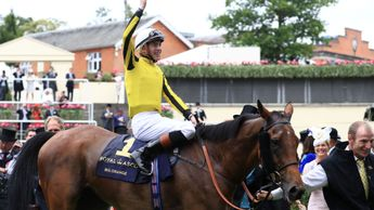 Big Orange won the Royal Ascot Gold Cup