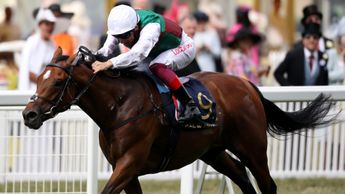 Without Parole winning at Royal Ascot