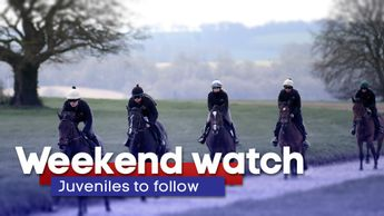 Weekend watch: Juveniles to follow