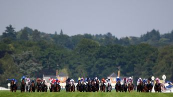 The Royal Hunt Cup is among the hardest races to unravel