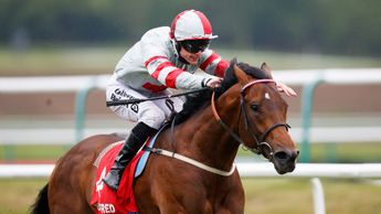 Knight To Behold wins under Richard Kingscote