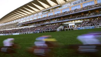 Ascot - set to confirm track switch