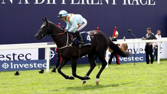 Marie's Diamond - set to return to the Curragh