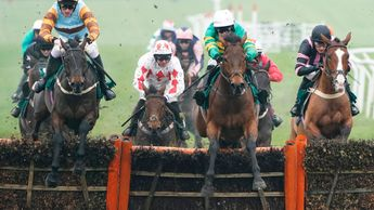 Duc De Beauchene wins at Cheltenham