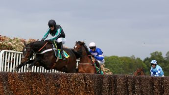 Altior on his way to a record-breaking win at Sandown