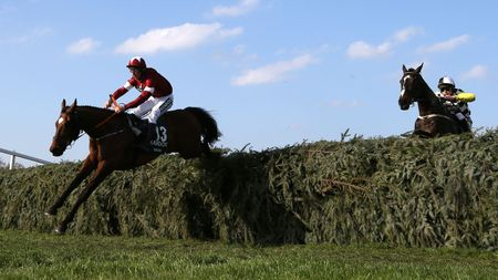 Tiger Roll leads Pleasant Company over the final fence