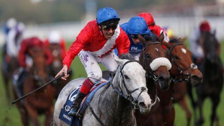 Persuasive wins the Queen Elizabeth II Stakes from Ribchester