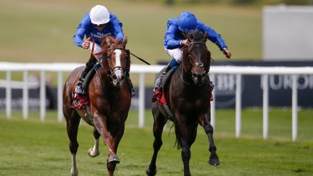 Hawkbill and Frontiersman fight out the finish at Newmarket