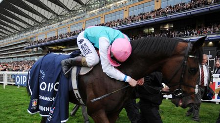 Frankel sealed his incredible career with victory in the Champion Stakes