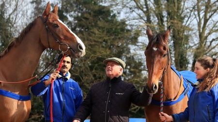 Colin Tizzard pictured with Native River (left) and Cue Card
