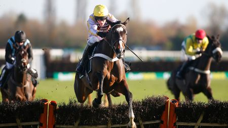 Jenkins: Looks well-handicappped in the Greatwood