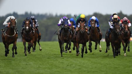 Could Khalidi (far right) win the Leger