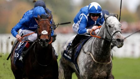 Librisa Breeze (r) won the QIPCO Champions Sprint