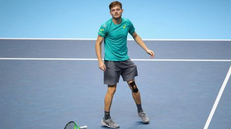 David Goffin dropped his racquet in surprise after clinching victory
