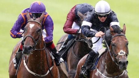 Wicklow Brave (l) and Rekindling