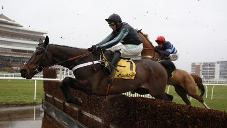 Altior on his way to victory at Newbury