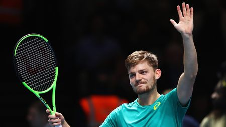 David Goffin: Will face Federer in the semi-finals