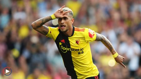 Roberto Pereyra: Watford ace celebrates his equaliser v Arsenal - scroll down for highlights