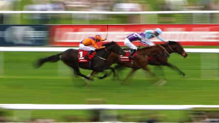 Harbour Law wins the St Leger