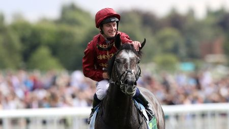 Oisin Murphy celebrates on Roaring Lion after winning the Juddmonte International Stakes