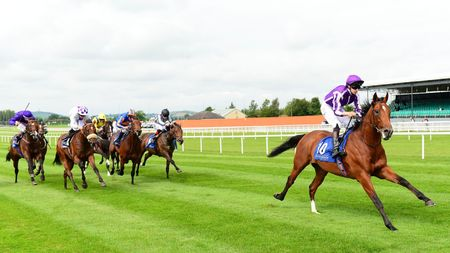 Saxon Warrior bounds clear of his rivals