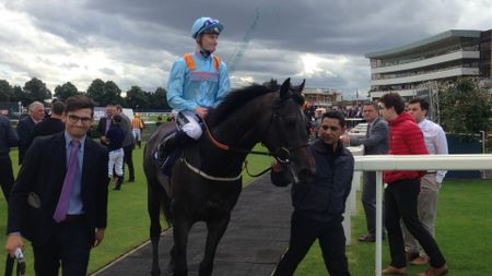 Dark Acclaim is led in after winning at Doncaster