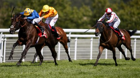 Poet's Word puts the race to bed at Goodwood