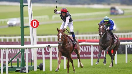 Search For A Song wins the Irish St. Leger