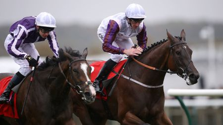 Laurens wins the Sun Chariot
