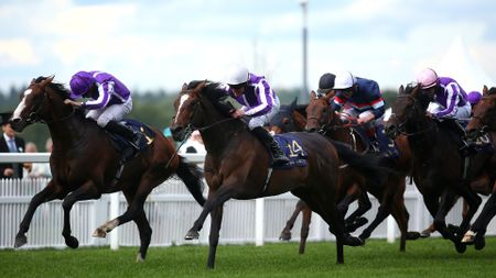 South Pacific (white cap) leads home a one-two-three for Aidan O'Brien