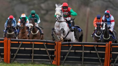 Capitaine jumps to victory under Harry Cobden
