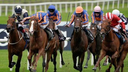 Love (second left, white face) wins the Moyglare Stud Stakes