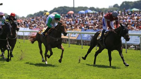 Viscount Barfield wins at York