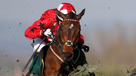 Blaklion: Won't warm up for Aintree at Cheltenham
