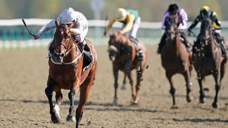 Matterhorn storms to victory at Lingfield