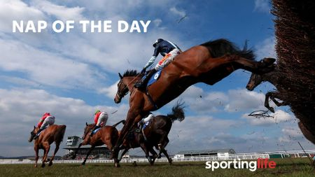 Check out our Nap of the day
