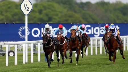 Dee Ex Bee wins the Sagaro Stakes under William Buick