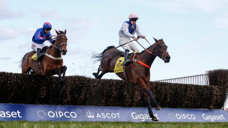 Waiting Patiently (right) jumps ahead of Cue Card