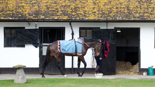 Altior pictured at Seven Barrows