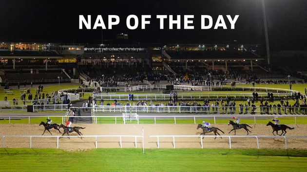 Check out our nap of the day...