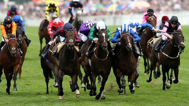 The Tin Man wins a thriller at Ascot