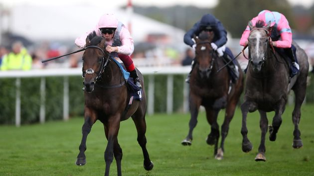 Too Darn Hot bursts clear at Doncaster