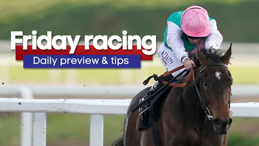 free horse betting tips forum